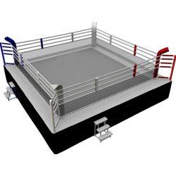 RING RAGE COMPETICIÓN MMA